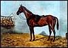 Ló az istálóban 30/40 cm
